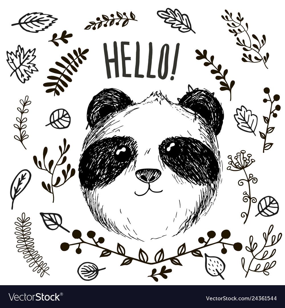 Panda animal drawing card