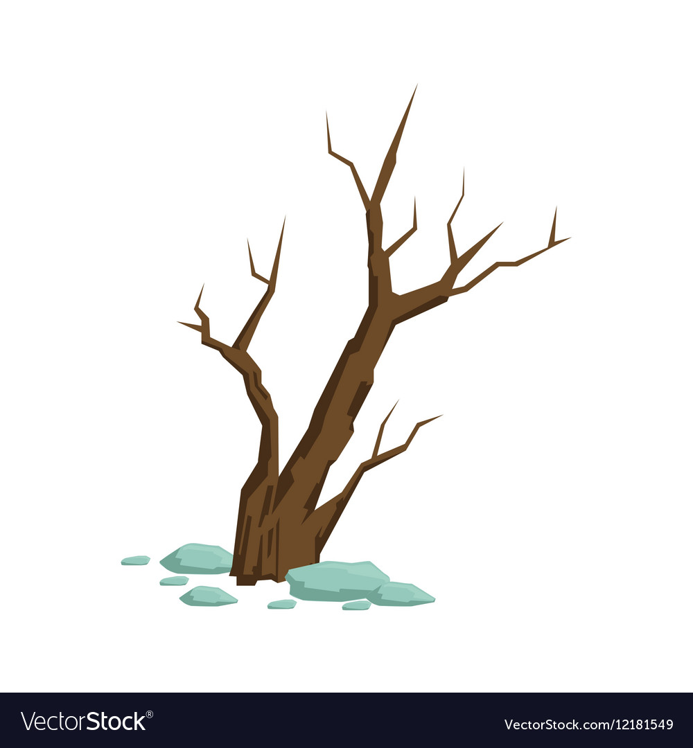 Dry Dead Bush Sticking From Rocky Soil Natural vector image