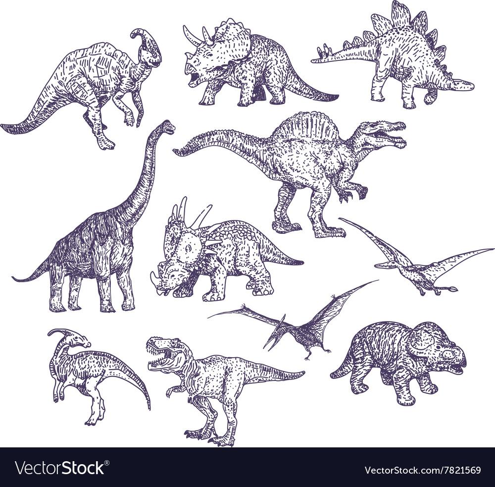 Dinosaurs drawings set