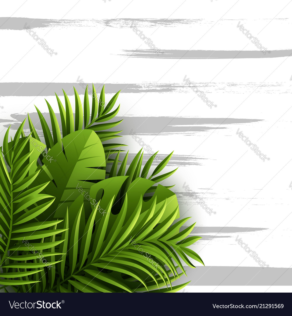 Exotic jungle tropical palm leaves summer floral