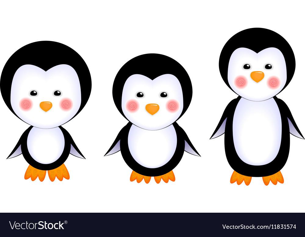 Cute penguins baby