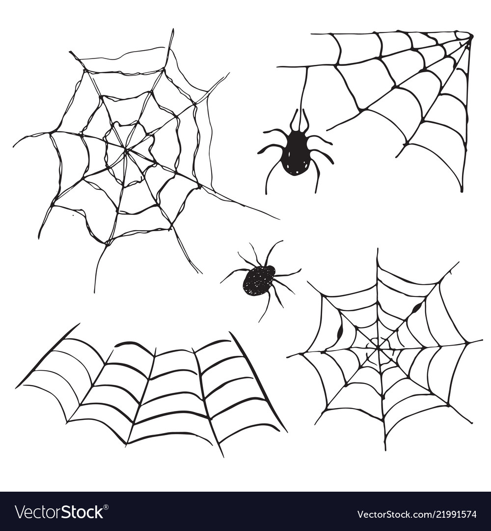 Spider web set hand drawn sketched web isolated