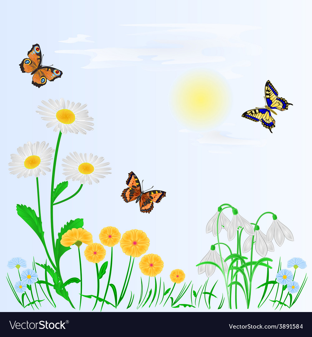 Spring Background Spring Flowers And Butterflies Vector Image