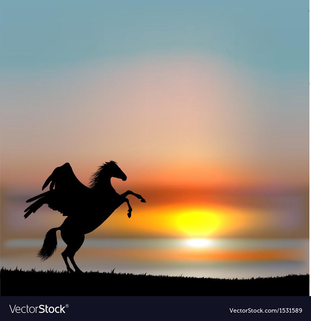 Pegasus on sunset sky