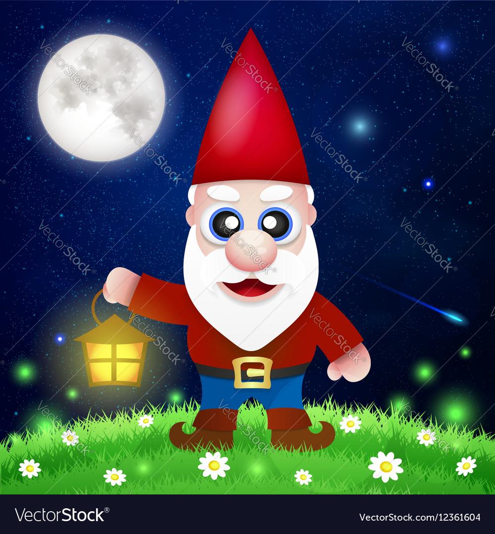 Cute Cartoon Garden Gnomes vector image