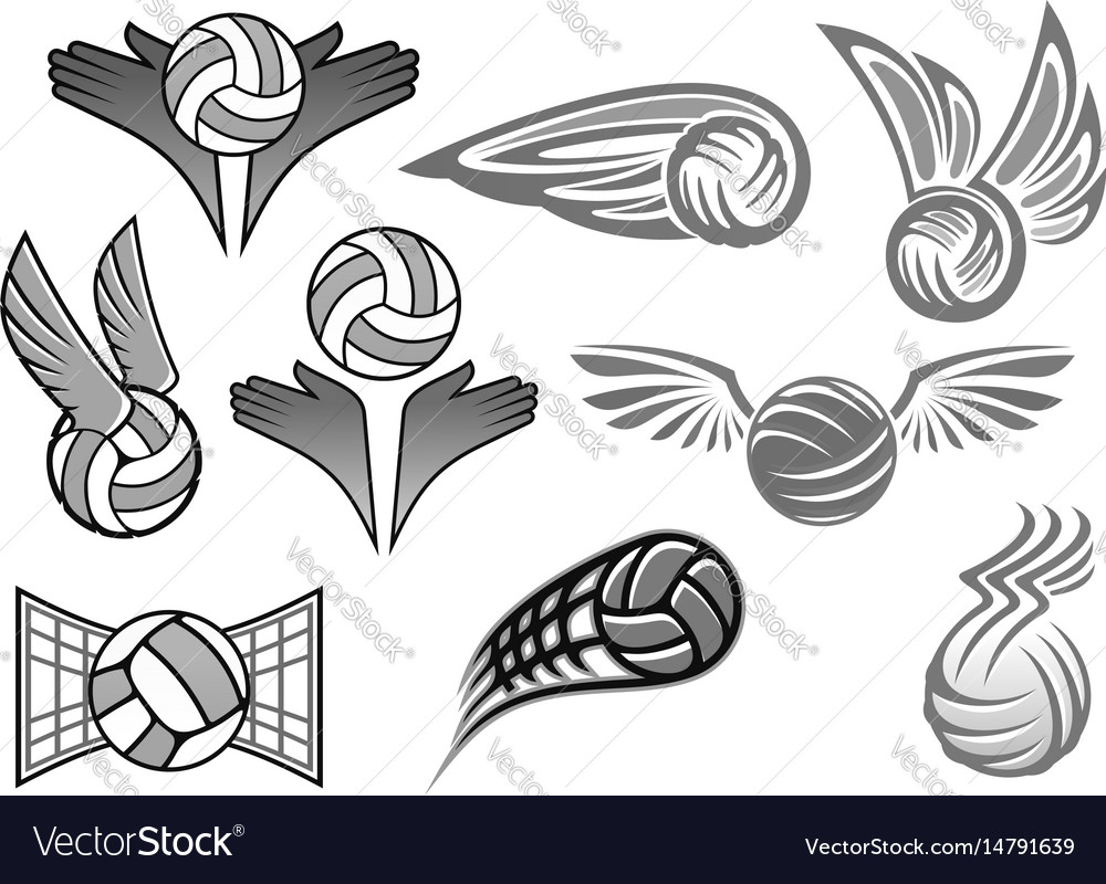 Balls icons for sport club vector image