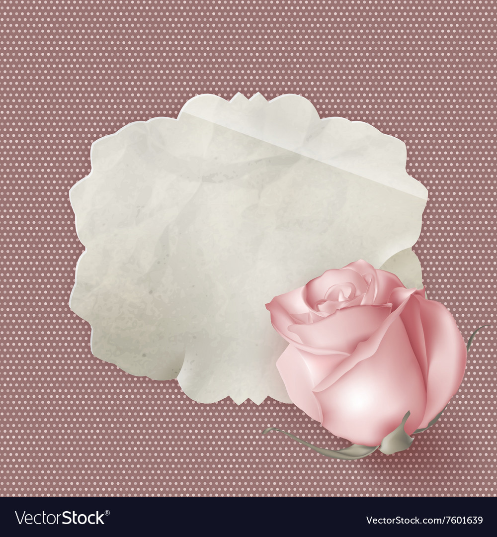 Retro greeting card with pink rose EPS 10