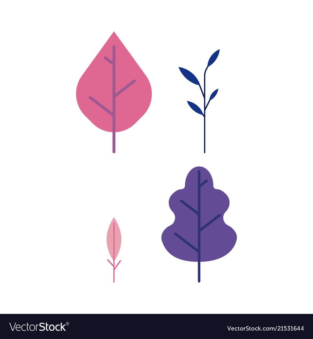 Plant leaves set - decorative elements of trees