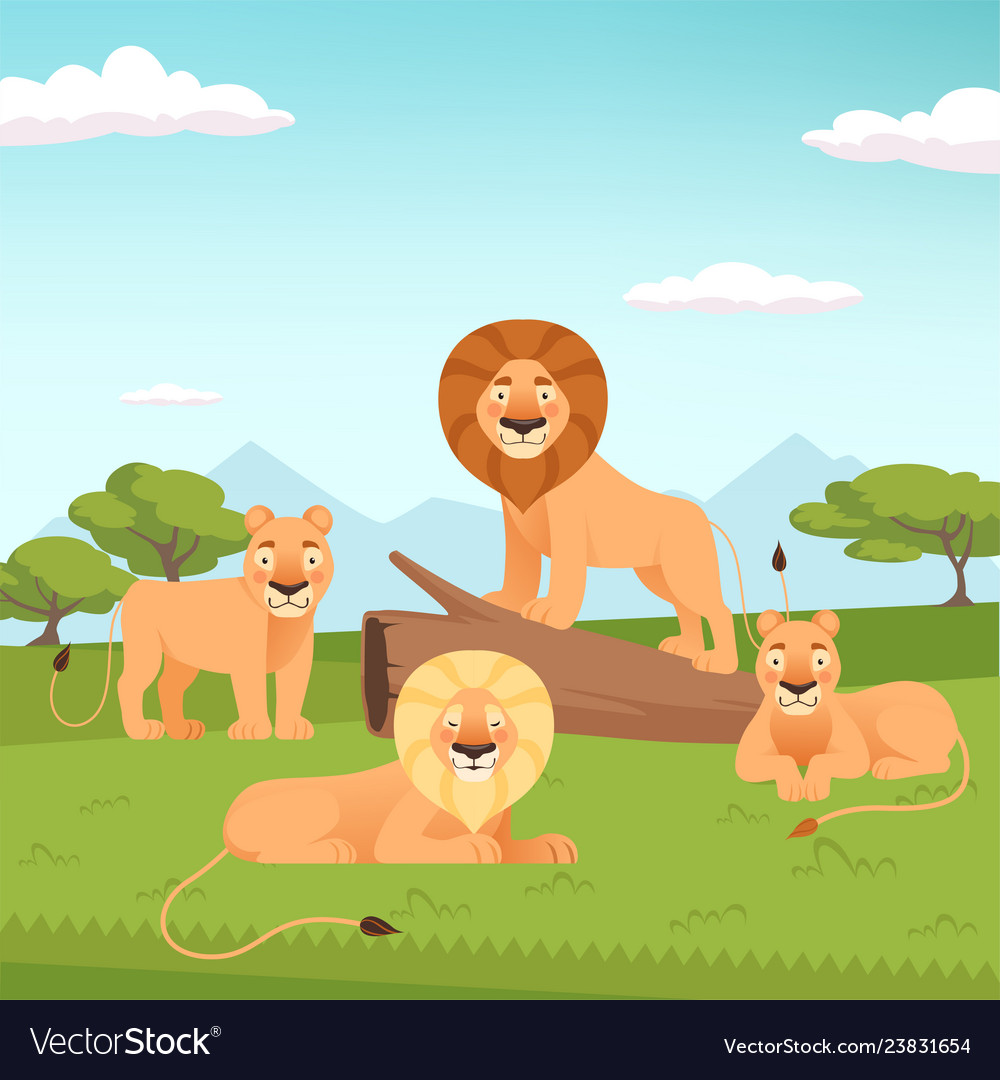 Lion pride landscape wild fur animal hunters