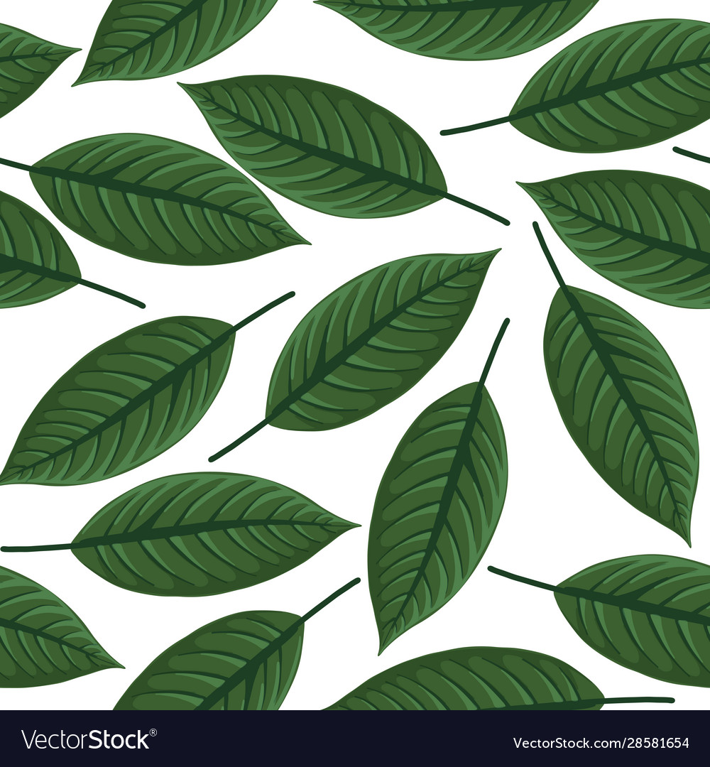Seamless pattern with drawing tropical leaf