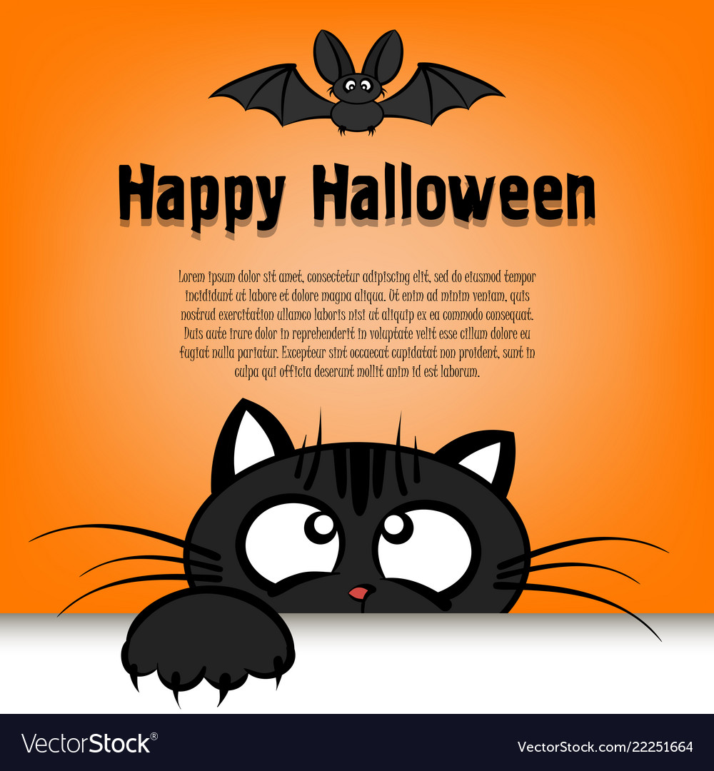 Happy halloween cat is looking up at the bat