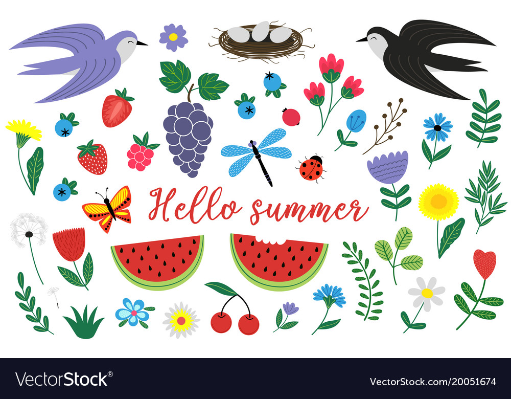Set of isolated elements of summer vector image