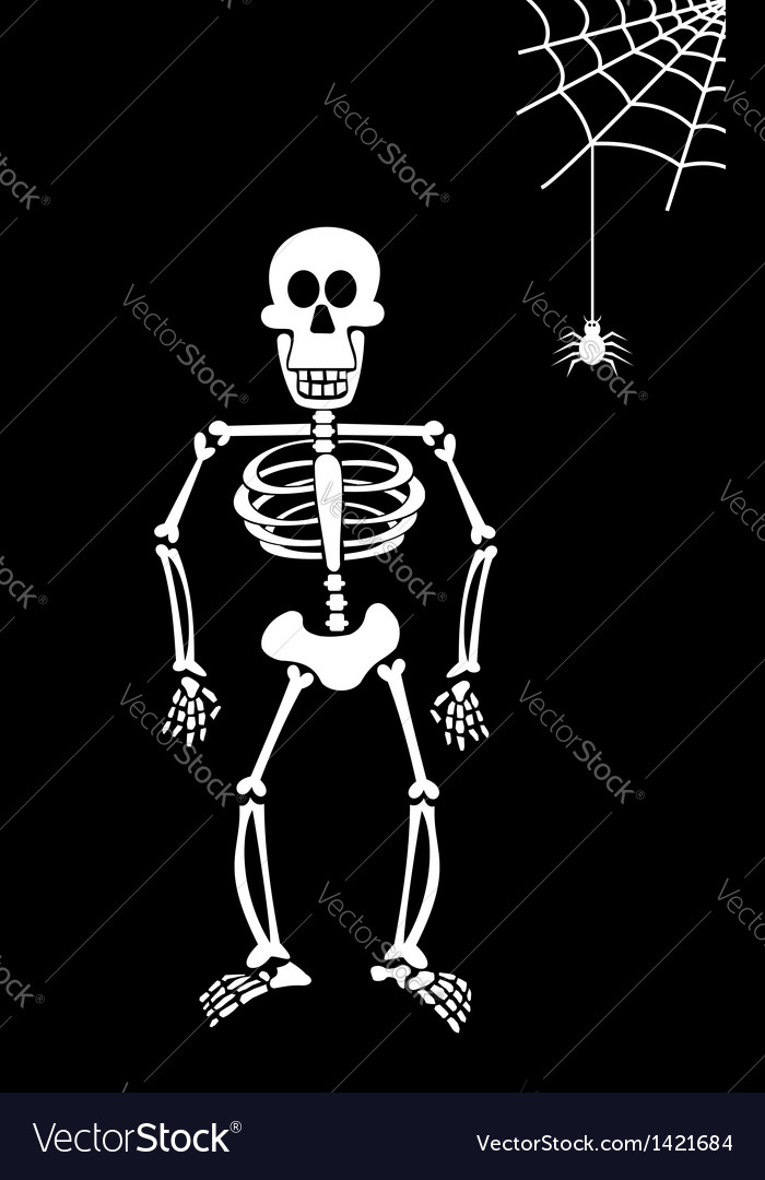Halloween Skeleton.Halloween Skeleton On Black Background
