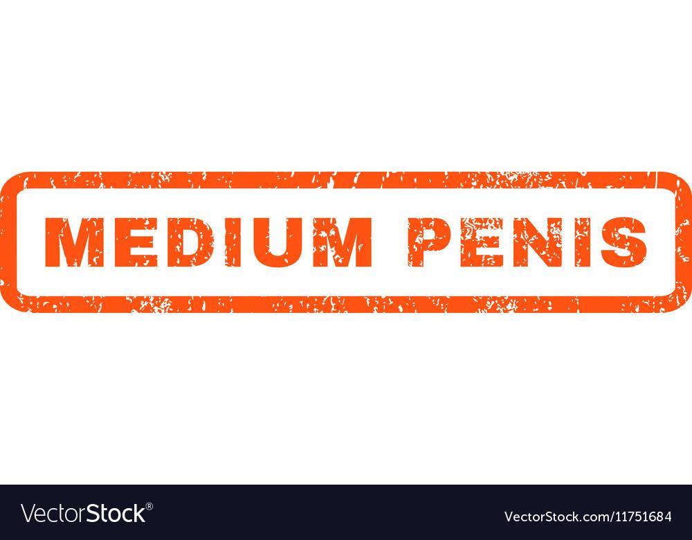 Medium Penis Rubber Stamp vector image