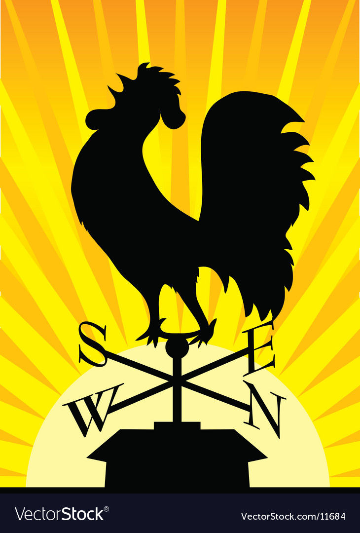 Weathervane rooster vector image