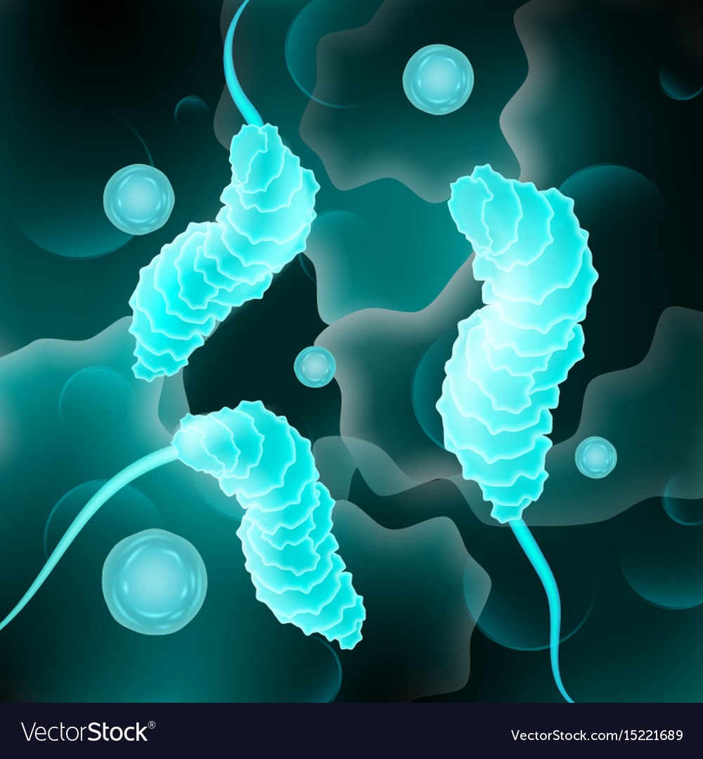 Abstract bacteria cells vector image