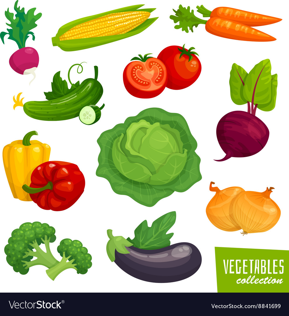 Fresh healthy vegetables collection Cartoon