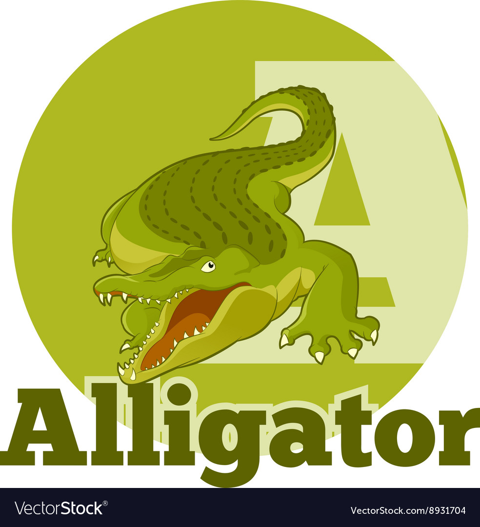 ABC Cartoon Alligator2