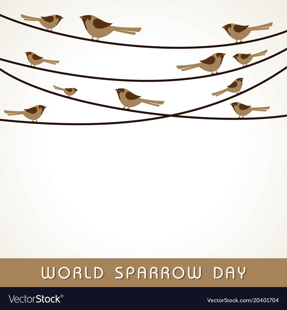 World sparrow day stock image