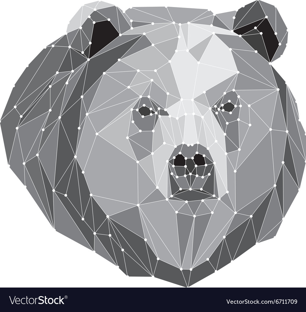 Gray bear portrait Abstract low poly design
