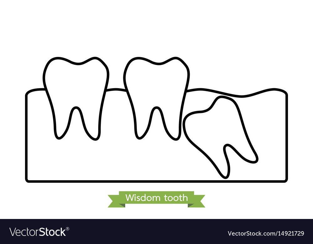 Wisdom tooth - cartoon outline style