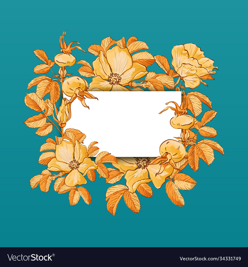Floral picture frame with drawn rose hips and