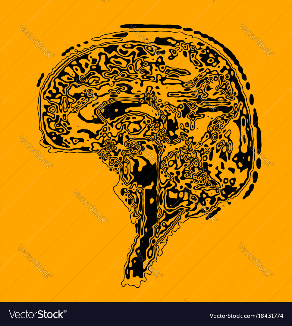 The Brain In The Form Of A Topographic Map The Vector Image
