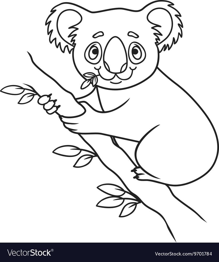 Раскраска коала картинки