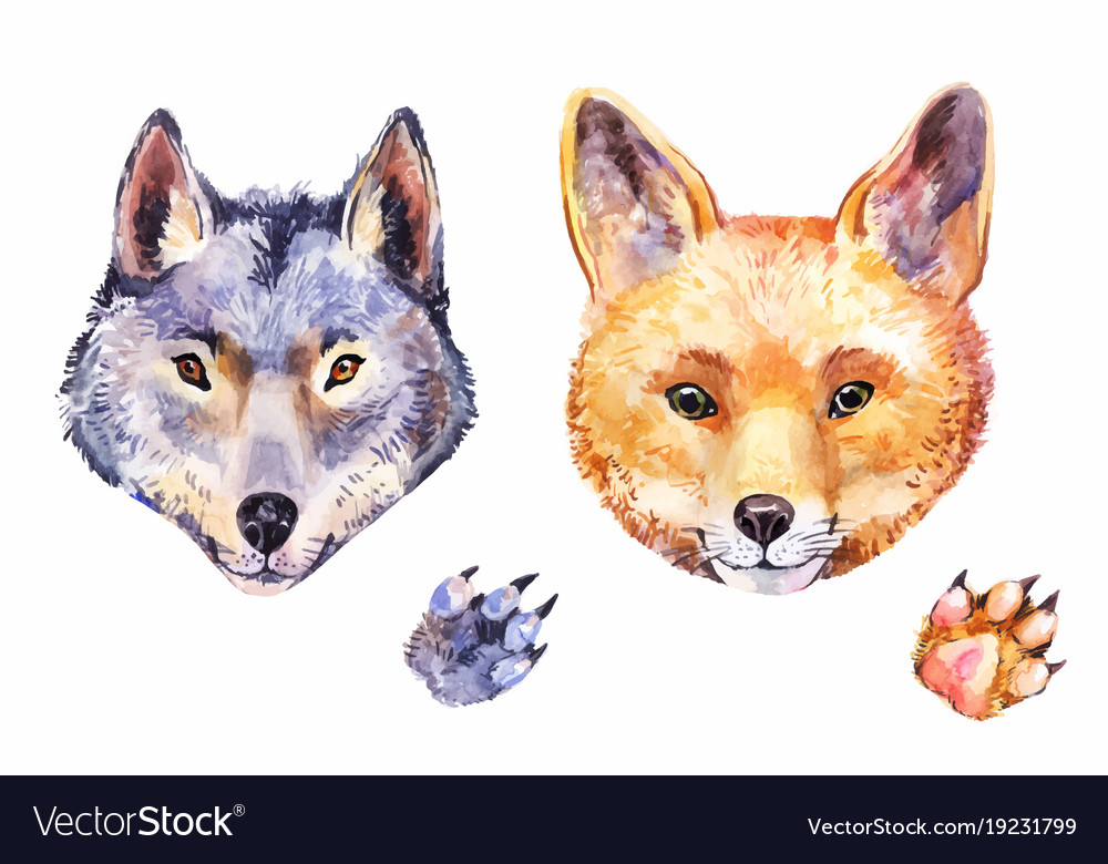 Cute watercolor fox and wolf hand-drawn animals