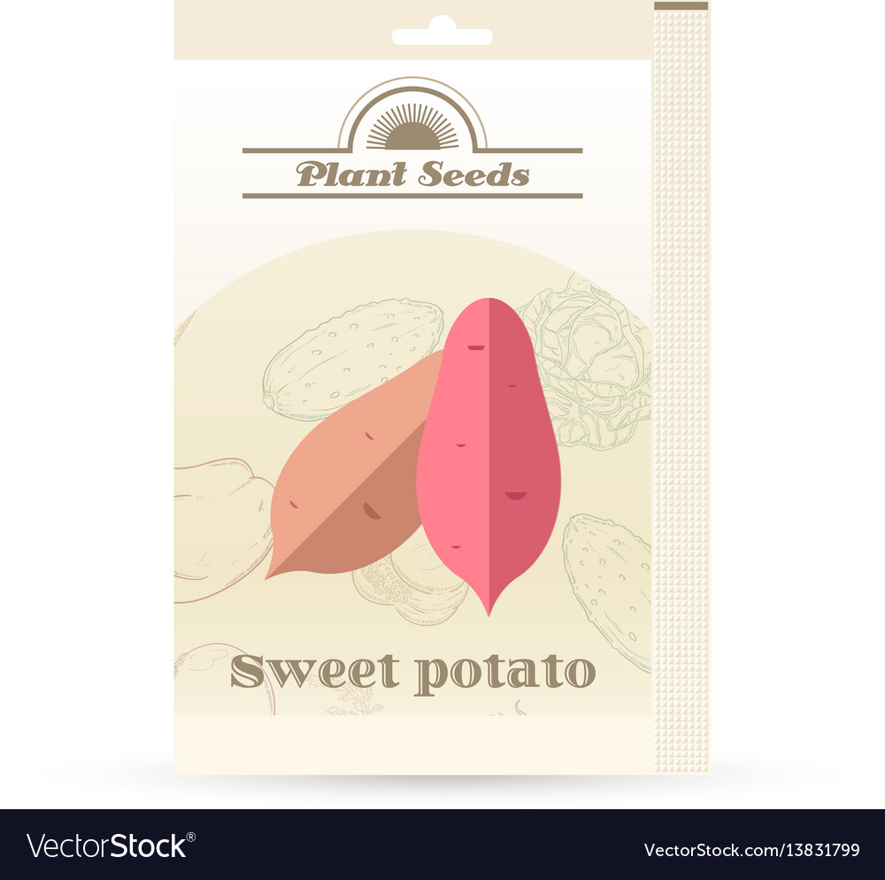 Pack of sweet potato seeds