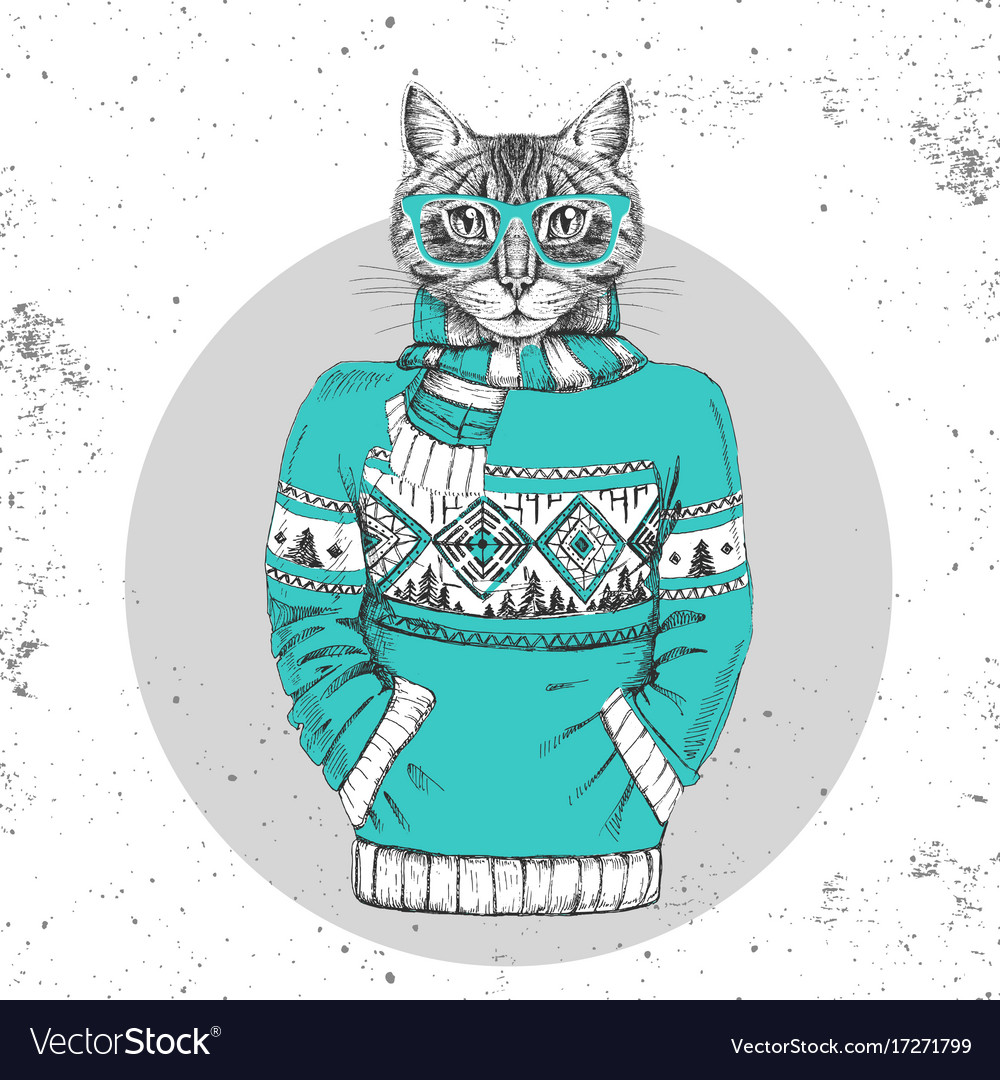 Retro hipster animal cat dressed in pullover