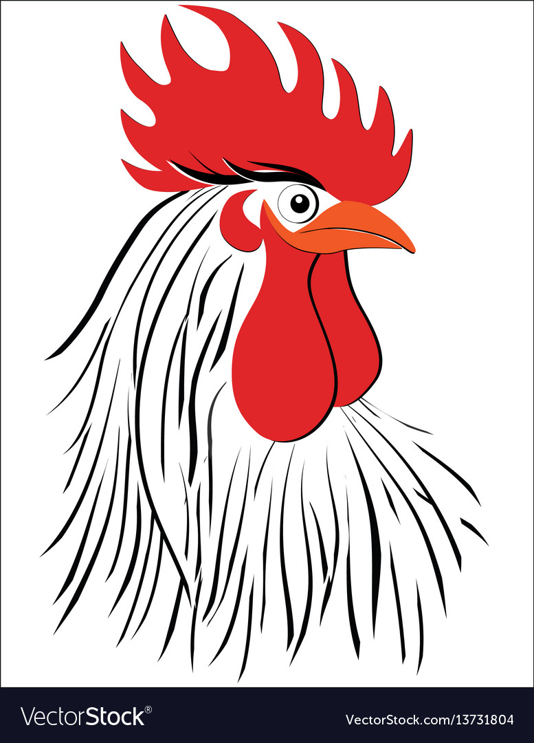Rooster bird concept of chinese new year rooster