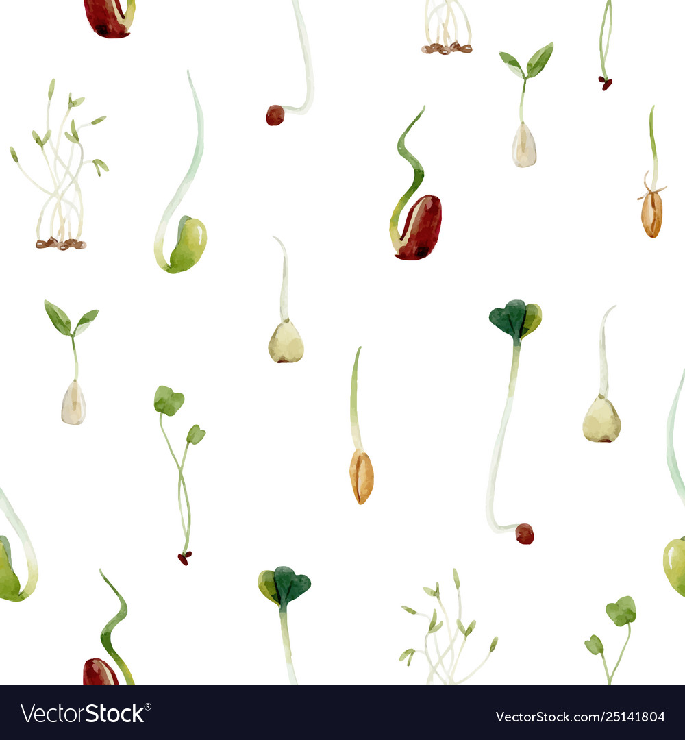 Watercolor beans peas seeds sprouts pattern