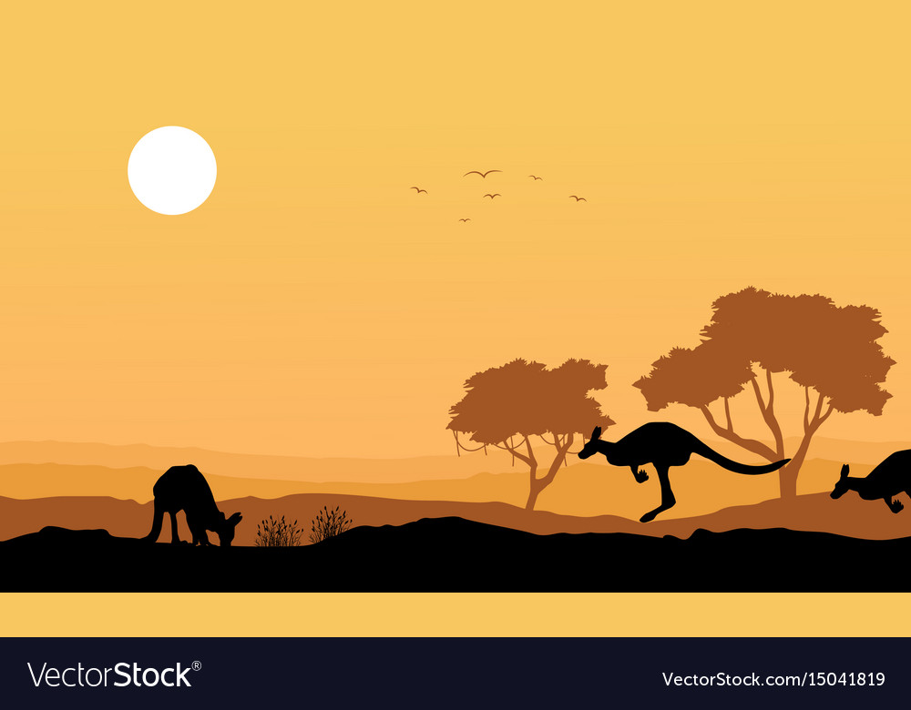 Silhouette kangaroo in the hill landscape vector image