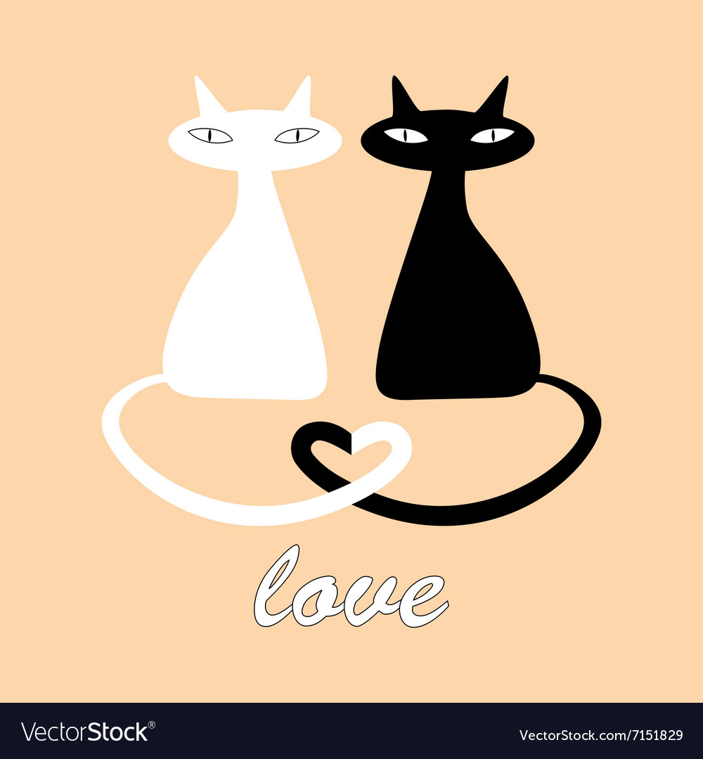 Black And White Cats In Love Royalty Free Vector Image