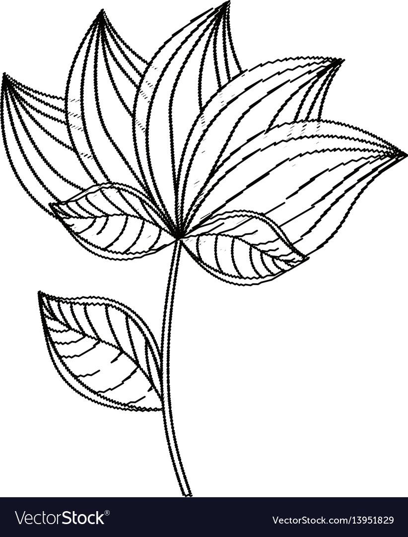 Lotus flower decoration sketch