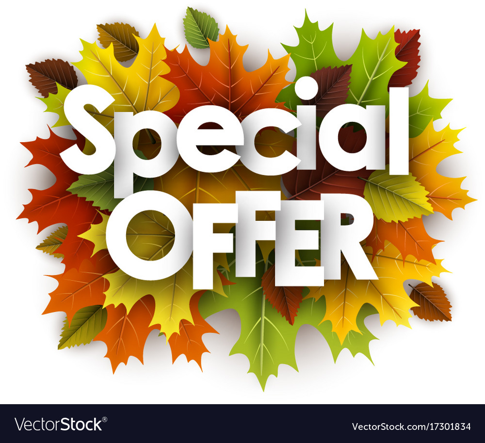 Autumn special offer background with leaves