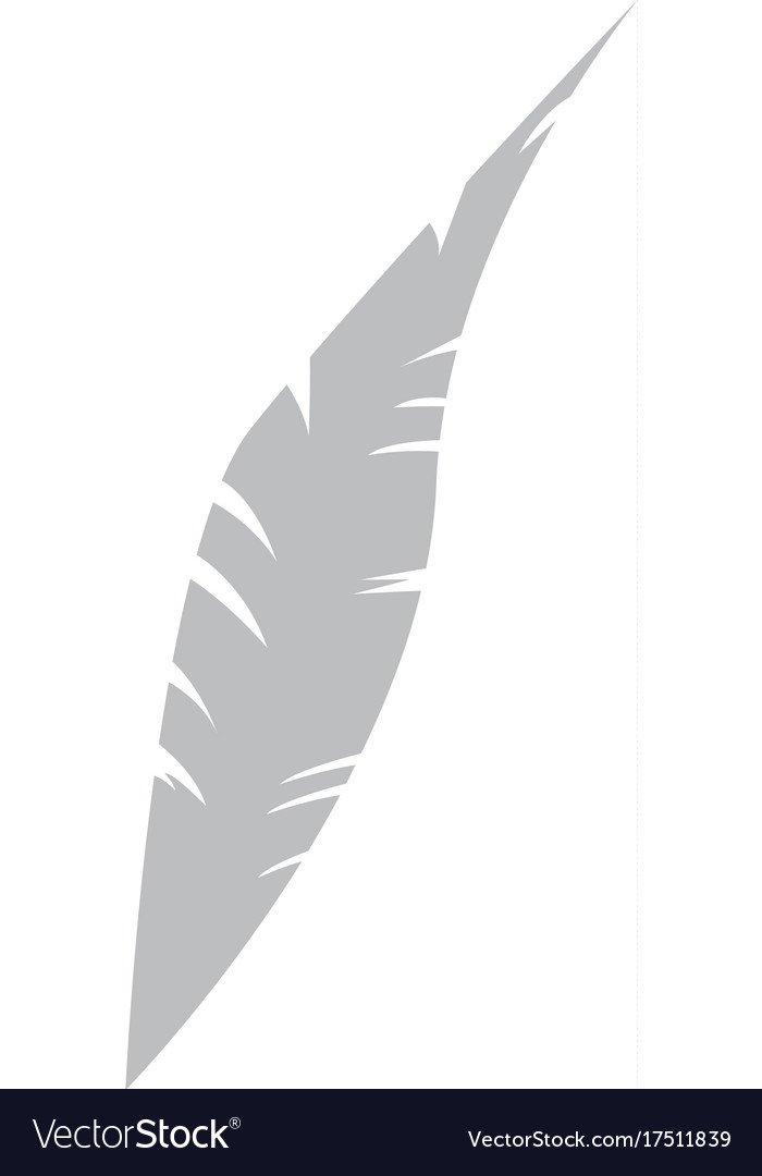 Isolated feather icon