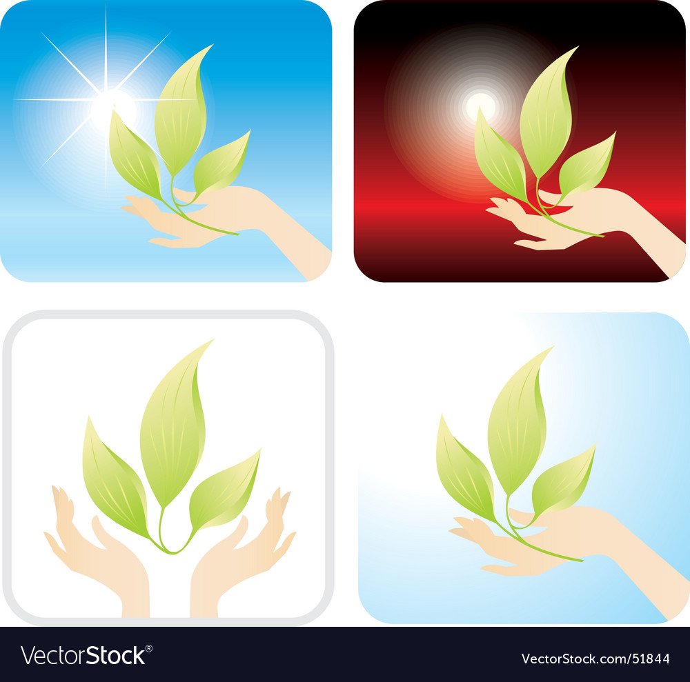 Sprout vector image