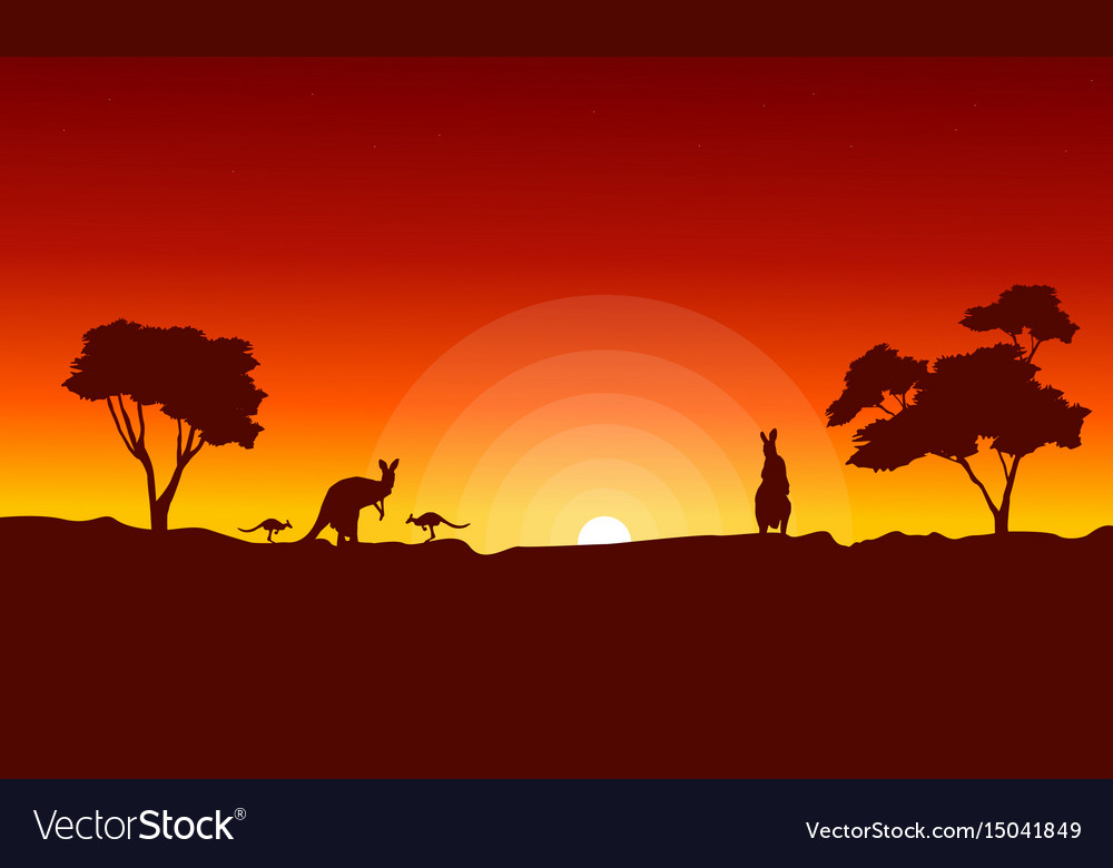 Kangaroo with red sky landscape silhouette vector image