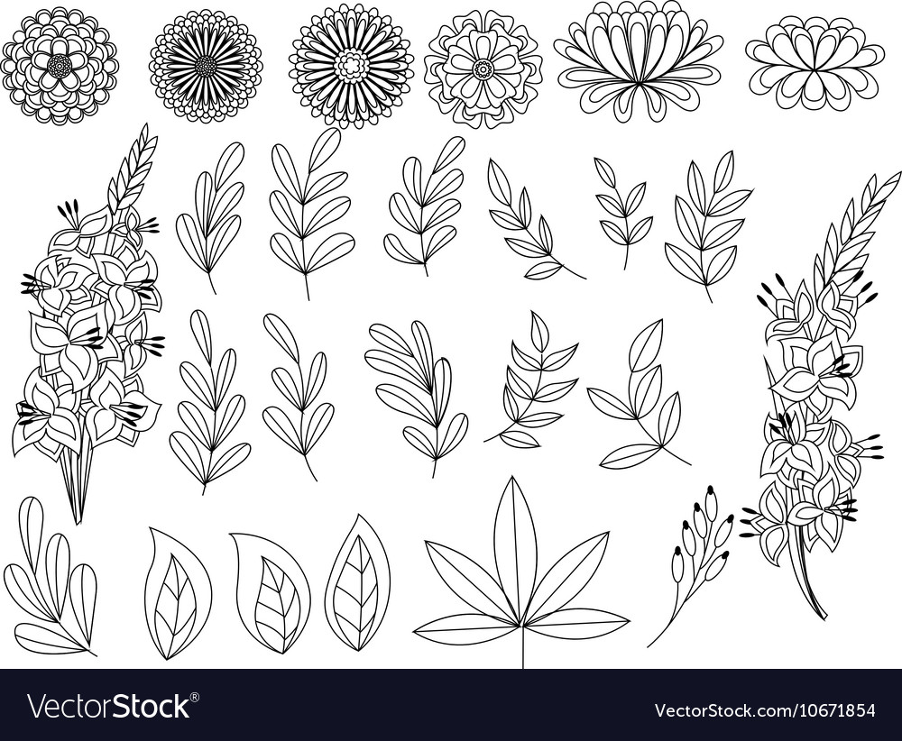 Set of outline autumn leaves and flowers
