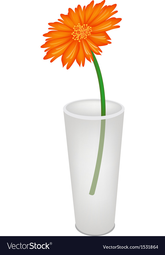 A Lovely Fresh Daisy Flower In Glass Vase Vector Image
