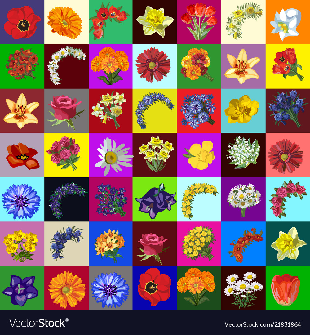 Big group set of flowers and bouquets of garden