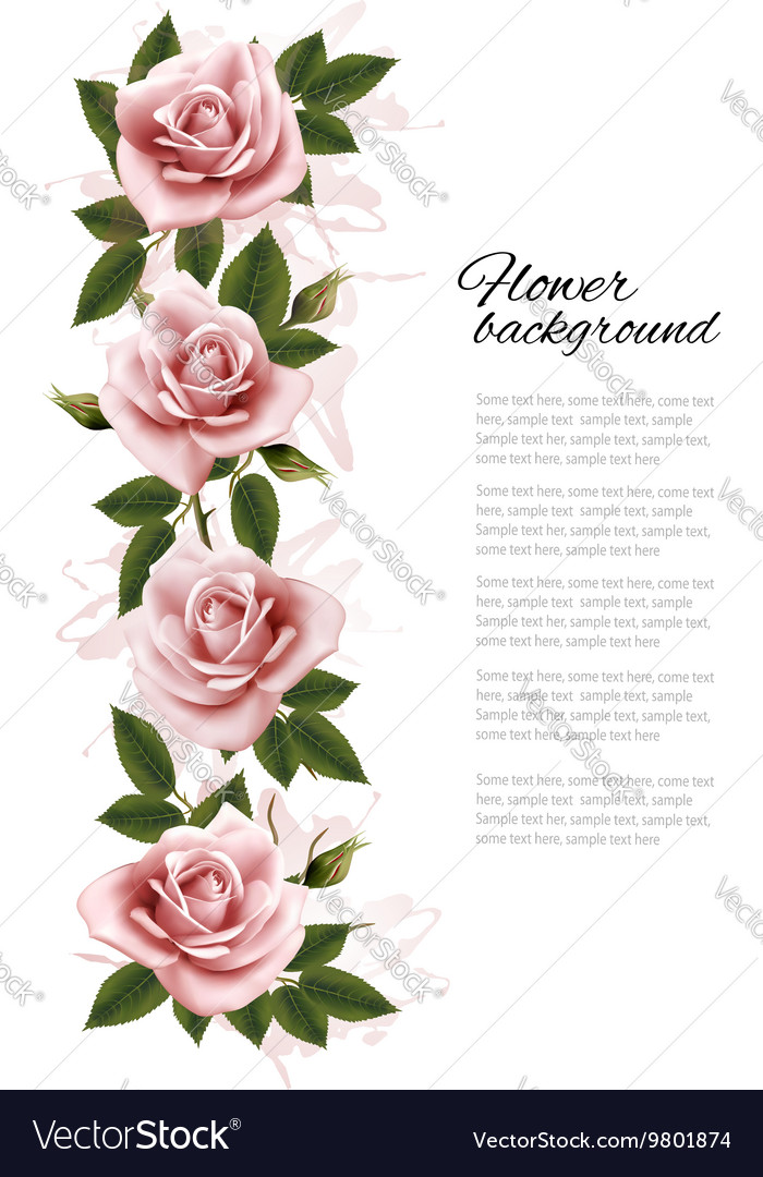 Flower background with beauty pink roses