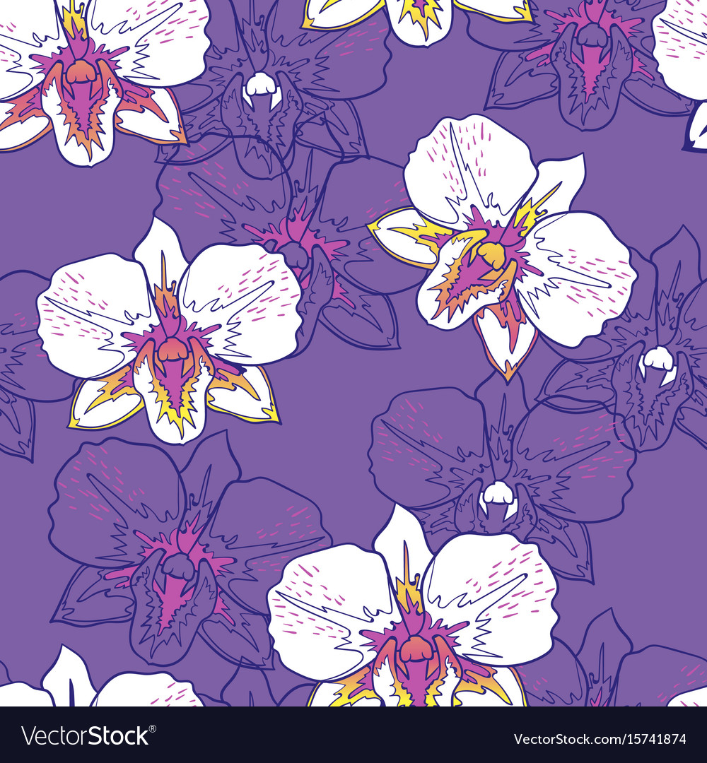 Seamless floral pattern white orchids vector image