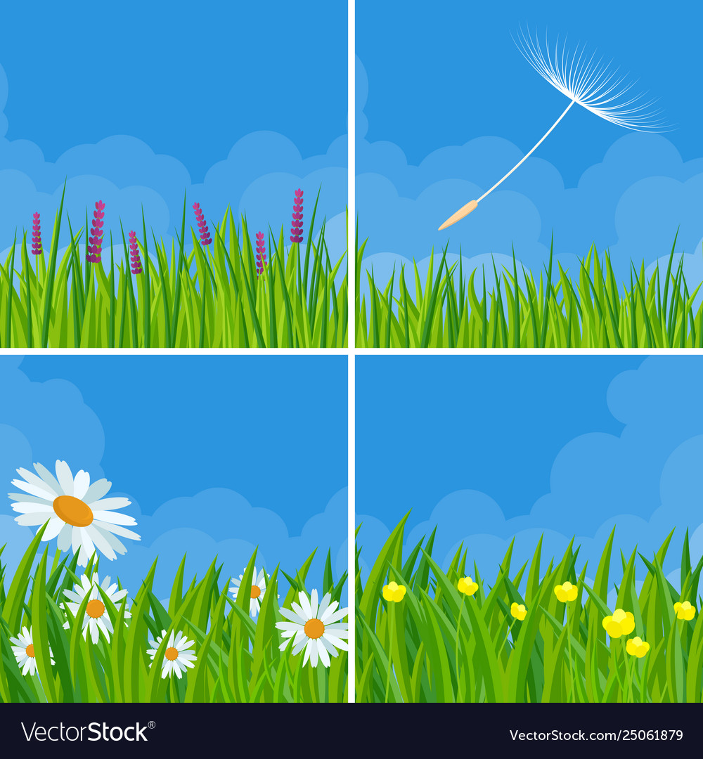 Spring and summer meadow backgrounds