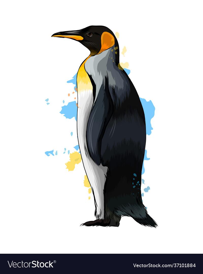 Emperor penguin from a splash watercolor