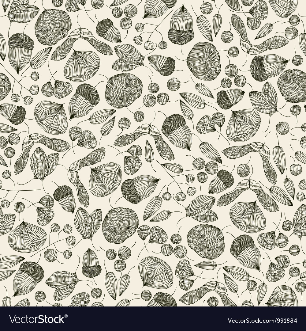 Seeds seamless pattern vector image