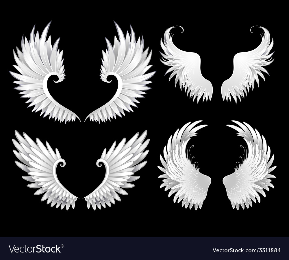 Set of White Wings