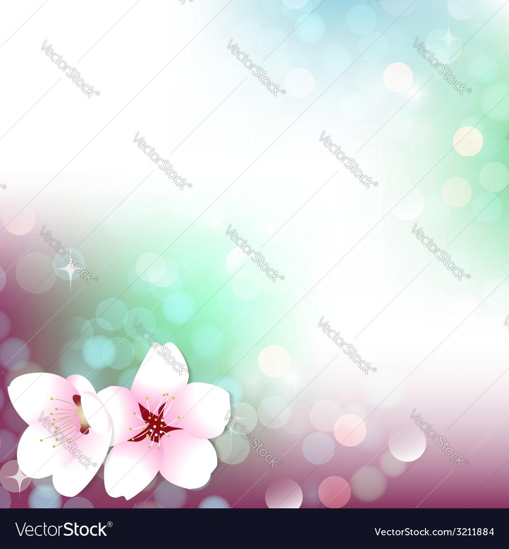 Spring bokeh cherry blossom background